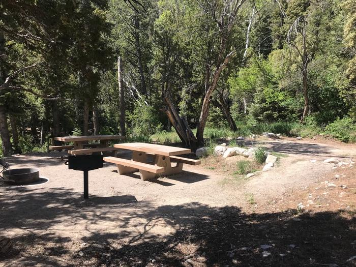 Picnic tables, campfire ring and raised grill shaded by conifersUpper Lehman Campground Site #12