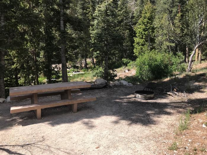Picnic table and campfire ring shaded by conifers.Upper Lehman Campground Site #13
