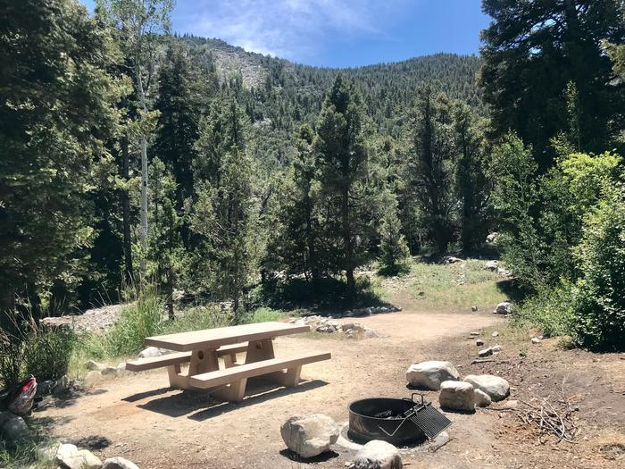 Picnic table and campfire ring in full sun with conifers and mountains in backgroundUpper Lehman Campground Site #21