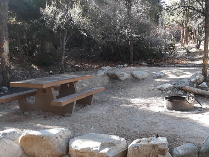Picnic table and campfire ring shaded by conifersUpper Lehman Campground Site #24