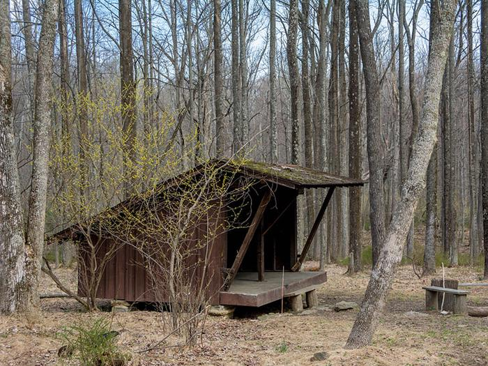 Side view of 3-sided wooden Adirondack shelter surrounded by trees in early spring.Enjoy camping in a backcountry Adirondack shelter year-round.