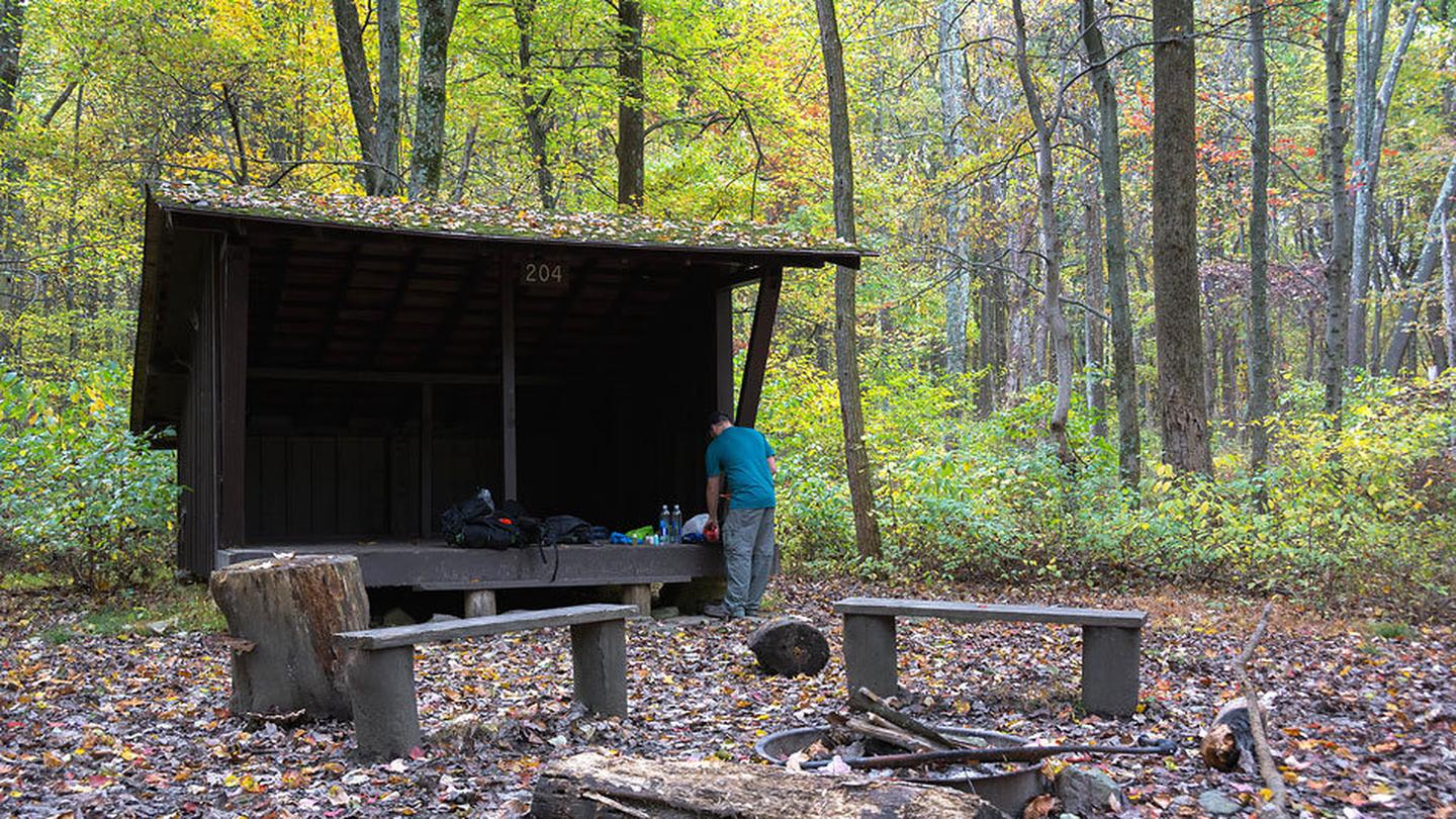 3-sided wooden Adirondack shelter surrounded by trees in late Camper unloading supplies. 2 wooden benches and metal fire ring.Relax and rejuvenate in a backcountry shelter surrounded nature.