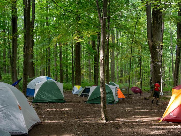 Multiple tents surrounded by deciduous treesYouth enjoy rustic tent camping year-round.  Each of the 3 sites can accommodate 25 youth campers.