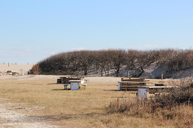 Horse Camp Site A