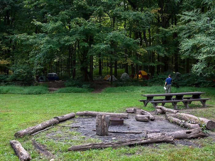 Metal fire ring/grill surrounded by logs and picnic tables in open field.  Multiple tents visible in the distant woods.Each of the 3 group sites can accommodate 25 youth.  There are 2 shared pit toilet buildings, a pavilion, potable water, fire-rings and grills.  Firewood is available onsite.