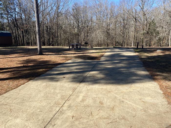 Wallace Creek Site 1