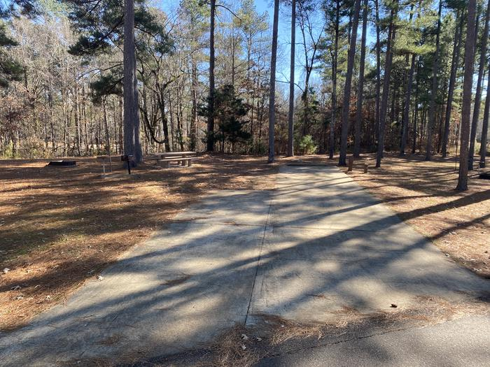 Wallace Creek Site 5
