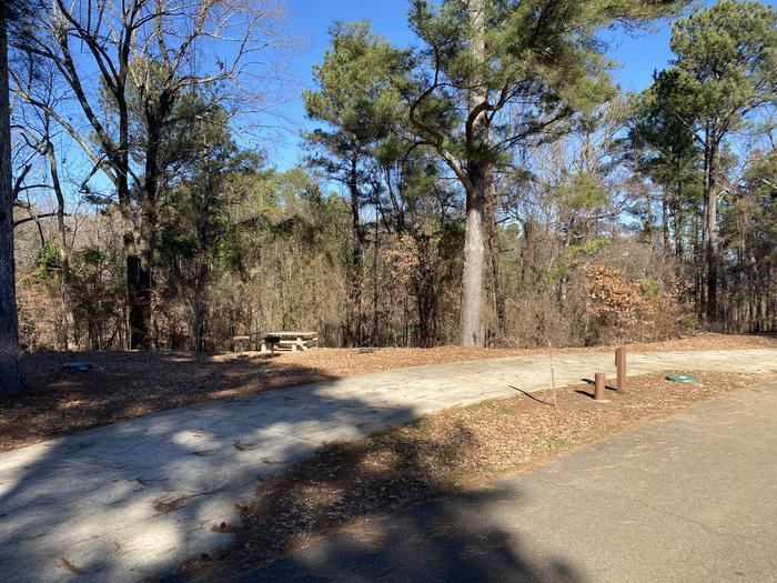 Wallace Creek Site 33