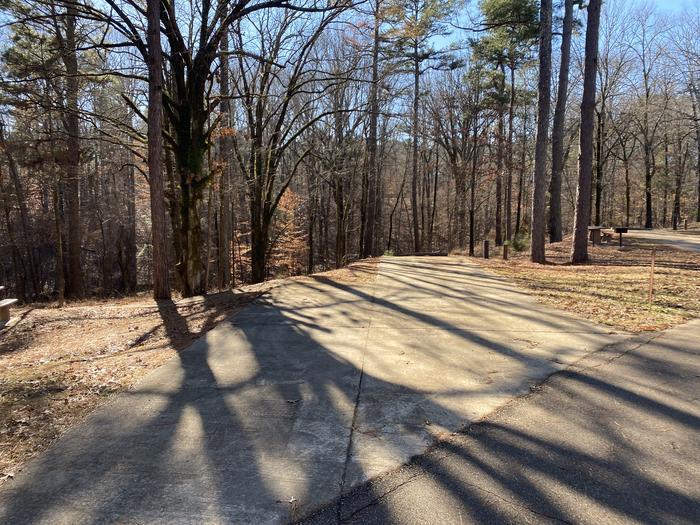 Wallace Creek Site 83