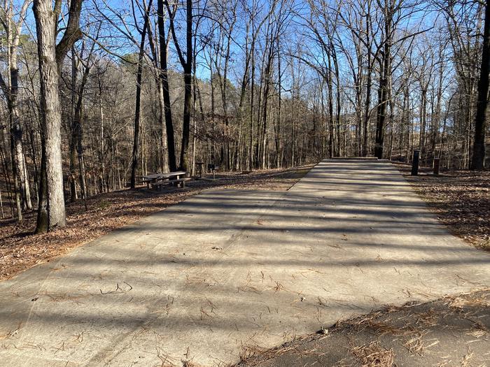 Wallace Creek Site 96