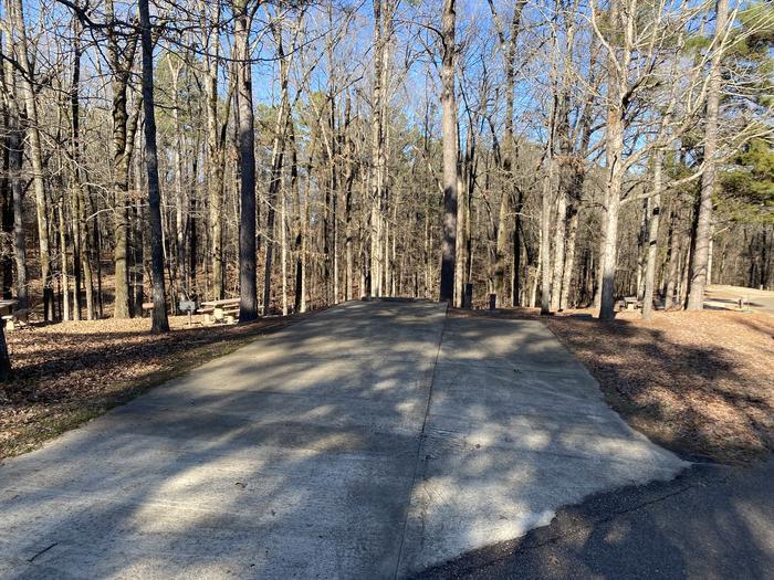 Wallace Creek Site 99