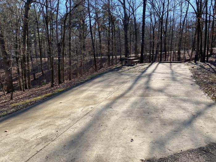 Wallace Creek Site 95