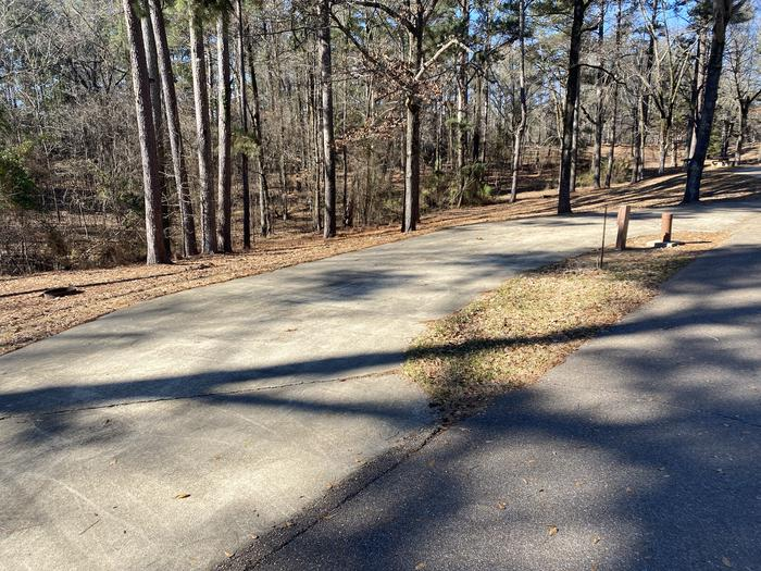 Wallace Creek Site 50