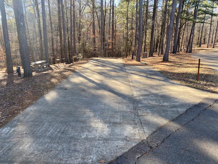 Wallace Creek Site 86