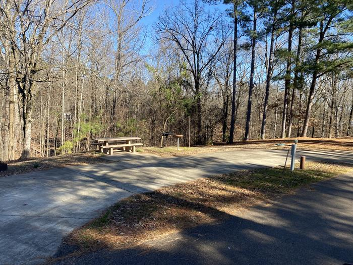 Wallace Creek Site 43