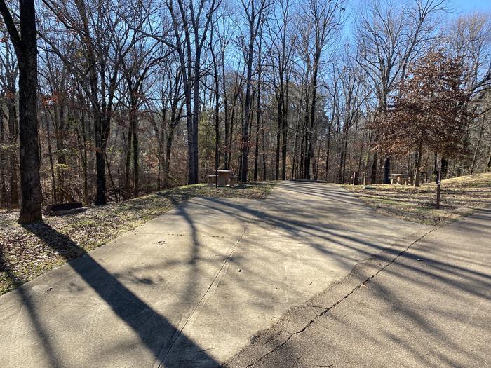 Wallace Creek Site 81