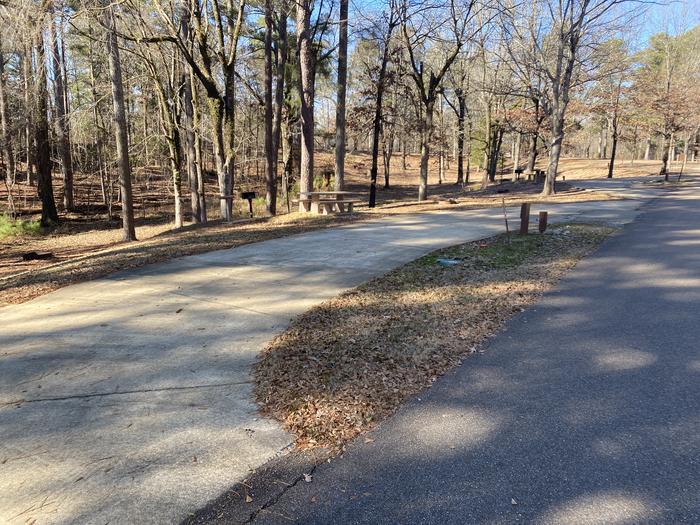Wallace Creek Site 49