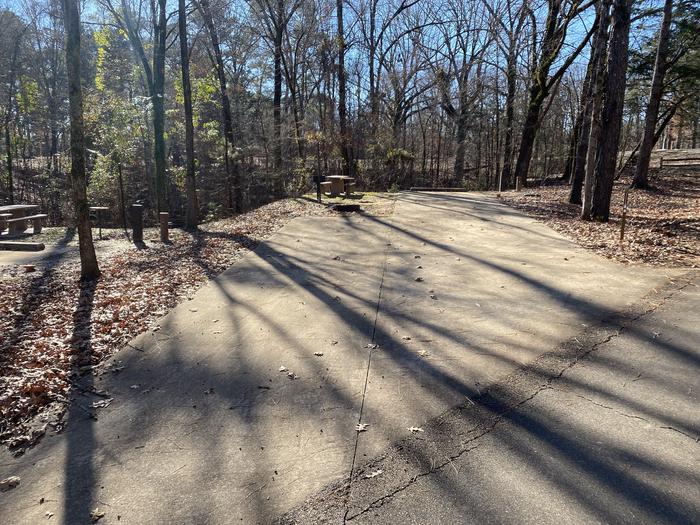 Wallace Creek Site 73