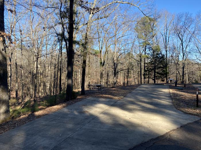 Wallace Creek Site 85