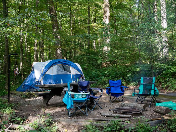 Tent and 4 camp chairs on wood chip campsite.  Site has a picnic table, fire ring/grill and lantern post.Campsites include a picnic table, fire ring/grill, lantern post, parking pad, and 9 x 9 wood chip tent pad.