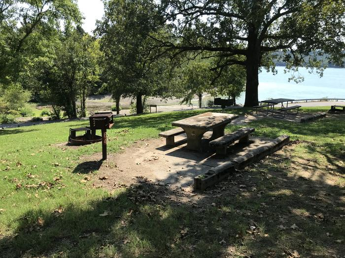 WILLOW GROVE CAMPGROUND SITE #64 TABLE, PEDESTAL GRILL, FIRE RING AND LAKE VIEWWILLOW GROVE CAMPGROUND SITE #64