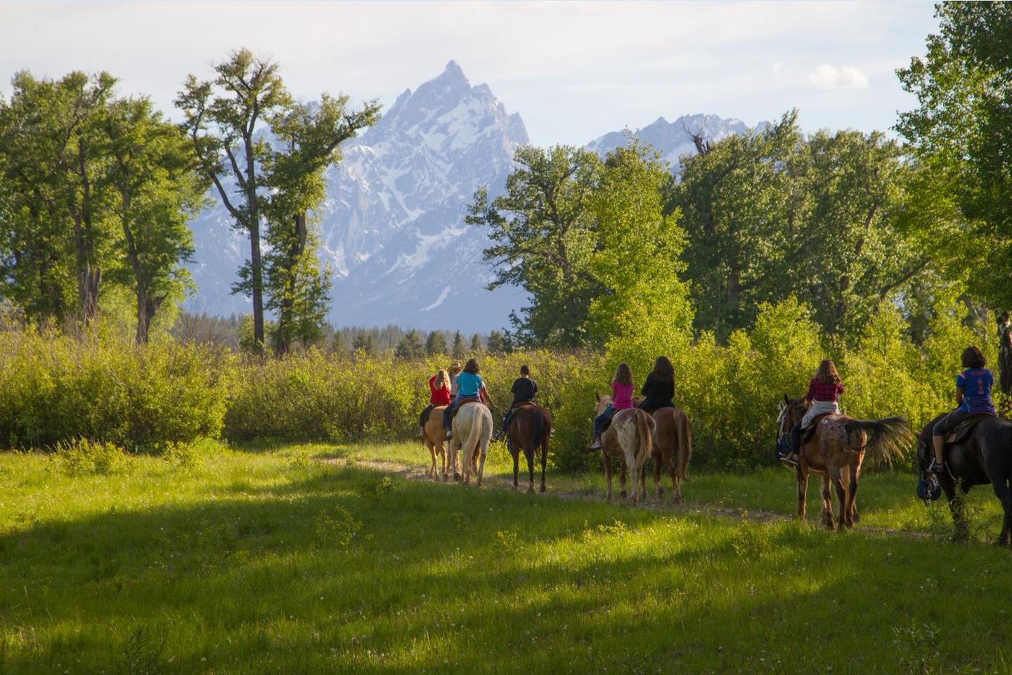 Colter Bay Horseback RidingNo trip to the Old West is complete without a horseback ride. We offer one- and two-hour rides suitable for all experience levels. Take in beautiful Teton vistas while riding among wildflower meadows.