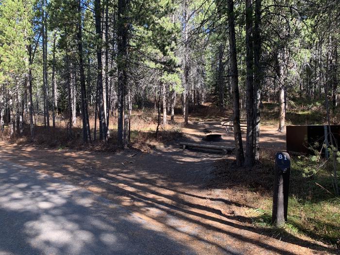 Campsite #81Parallel Parking Pad