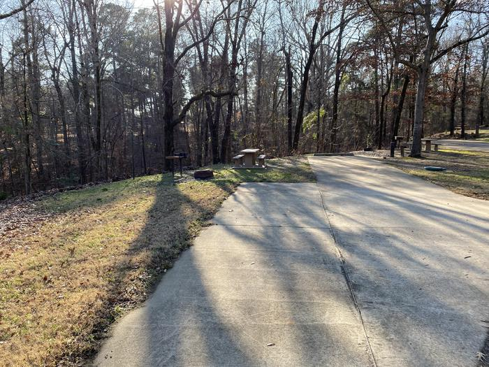 Wallace Creek Site 77