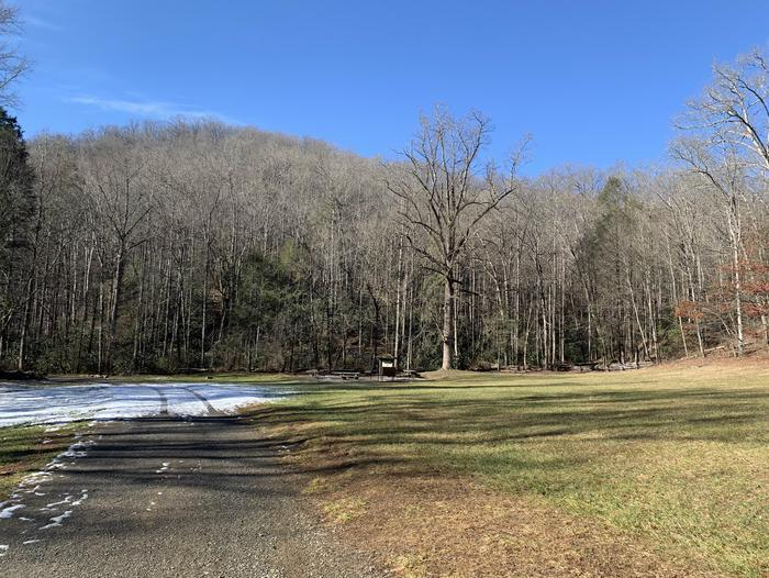 """Lower Cove Creek requires one short vehicle creek crossing, and offers easy access to """"Little Sliding Rock"""", one of the areas most popular swimming holes.The site offers a picnic area, oversized fire rings, potable water, and vault toilets."""