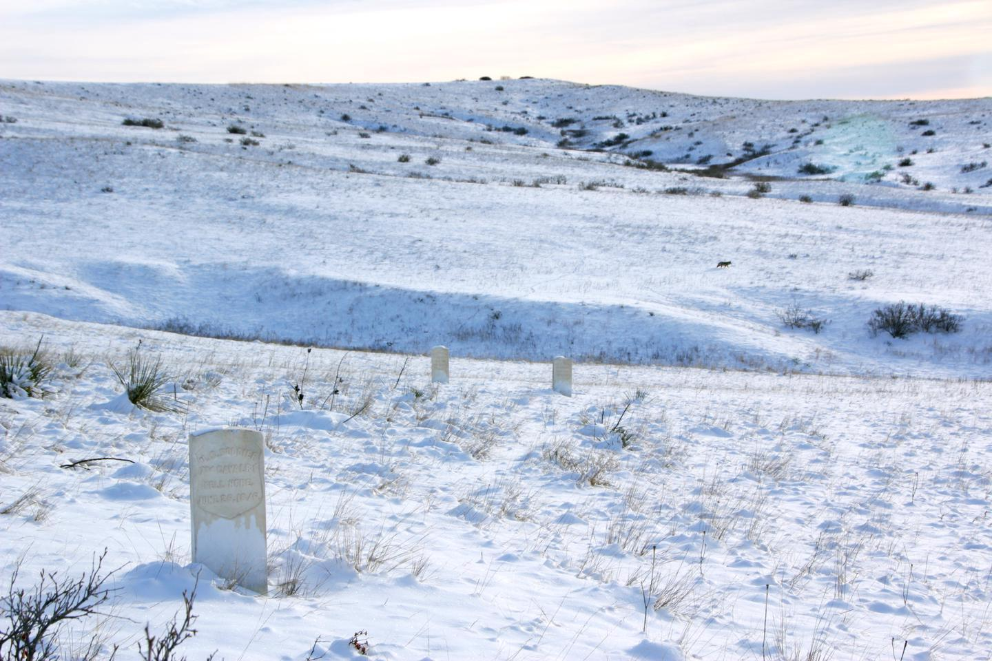 Headstones in the winterThe monument and battlefield are open year round, even in winter when snow coats the ground.