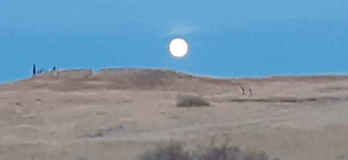 Rising Full MoonLittle Bighorn Battlefield National Monument moon rising above the Indian Memorial