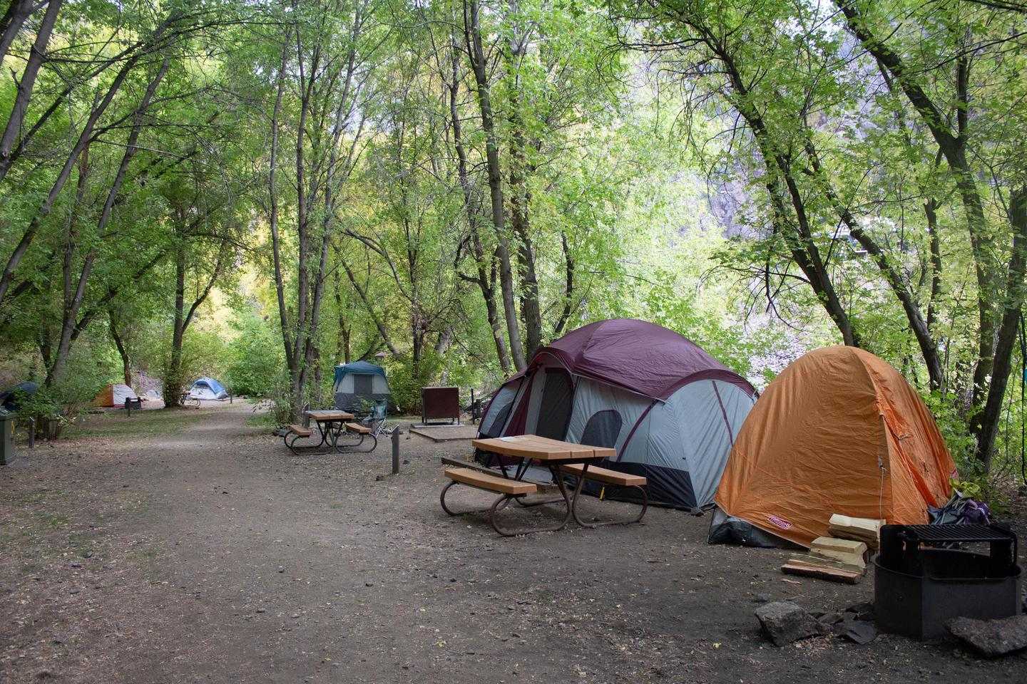 East Portal Campground - Walk-in sitesTen of the 15 sites are walk-in tent sites.