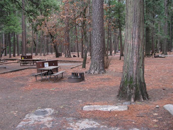 CampsiteCampsite 09