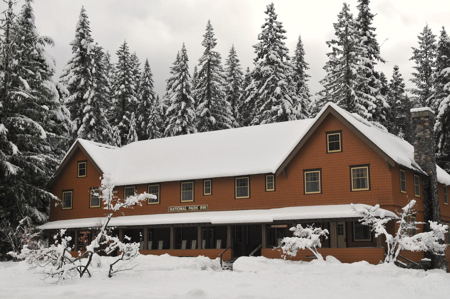 National Park Inn in WinterFor thousands of years, people have traveled up to, over, and around Mount Rainier. Today the park strives to preserve this history while providing a chance for new generations to find their own adventures.