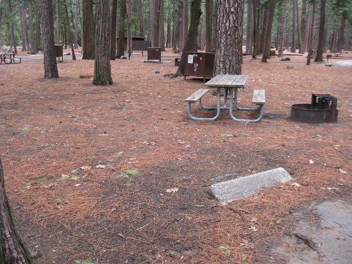 CampsiteCampsite 12