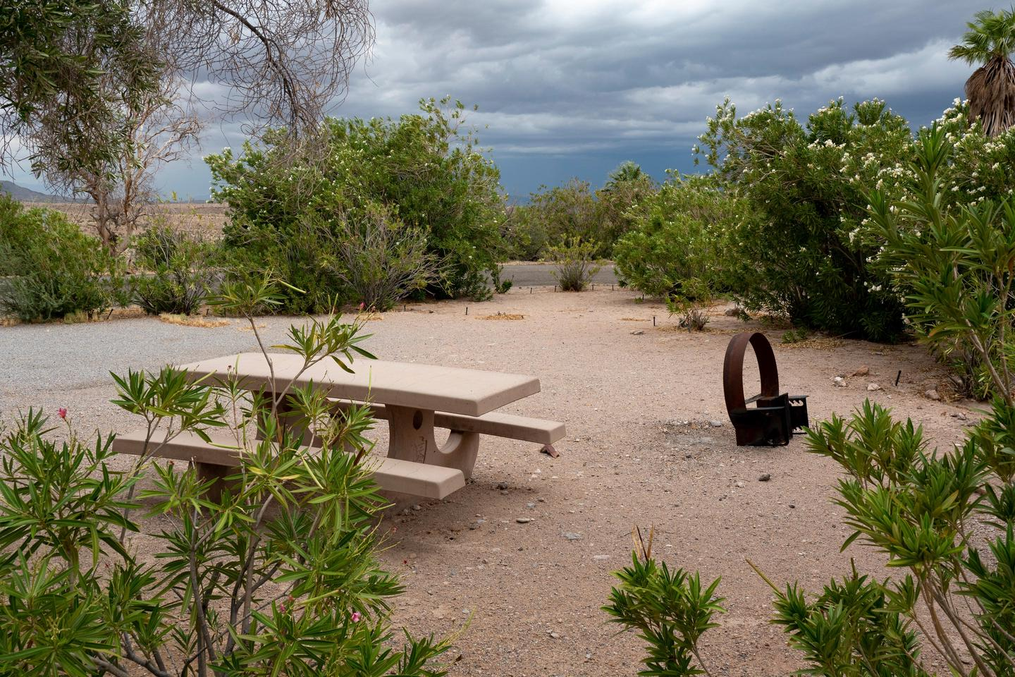 Preview photo of Echo Bay Campground