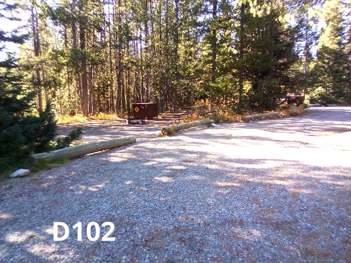 D Loop Site 102Colter Bay Campground