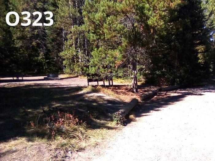 O Loop Site 323
