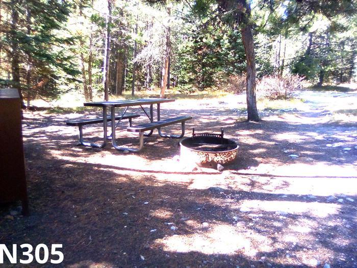 N Loop Site 305