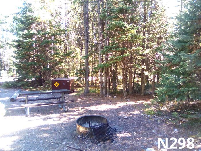 N Loop Site 298