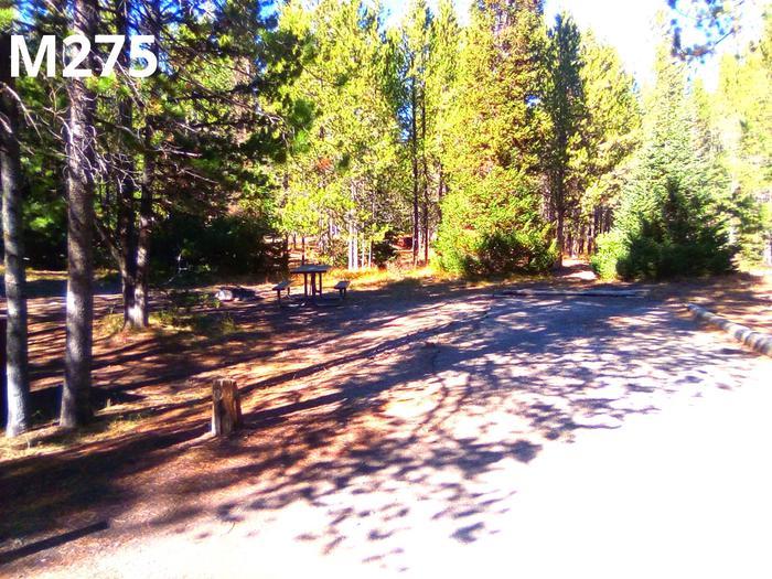 M Loop Site 275