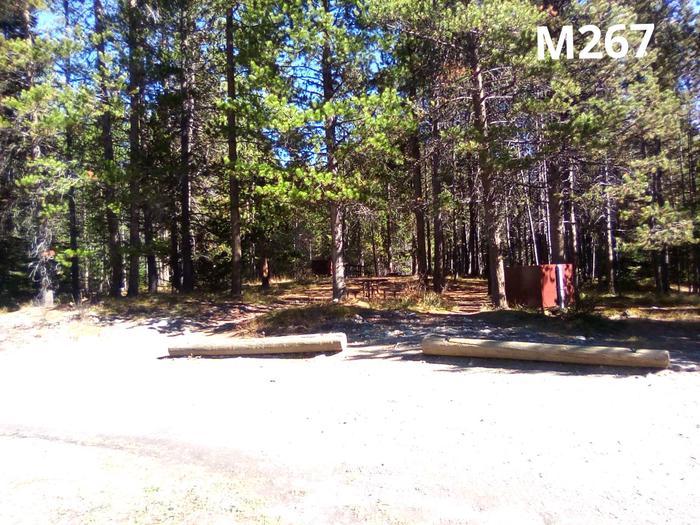 M Loop Site 267