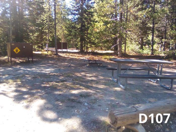 D Loop Site 107