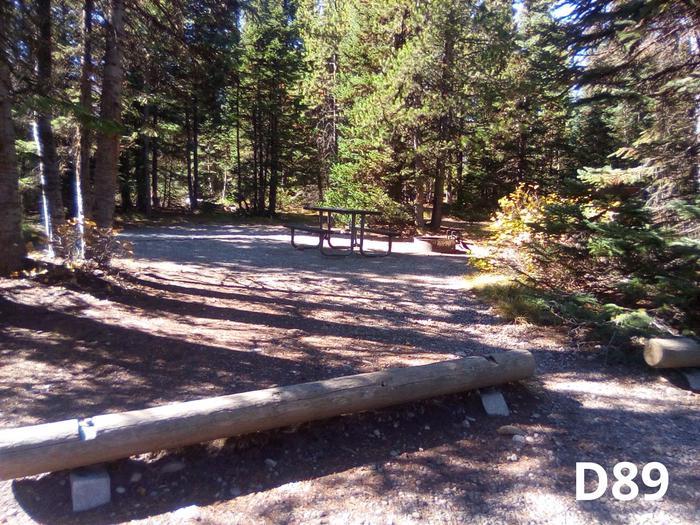 D Loop Site 89