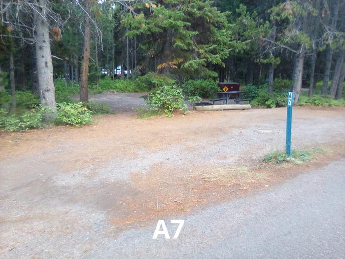 A Loop Site 7