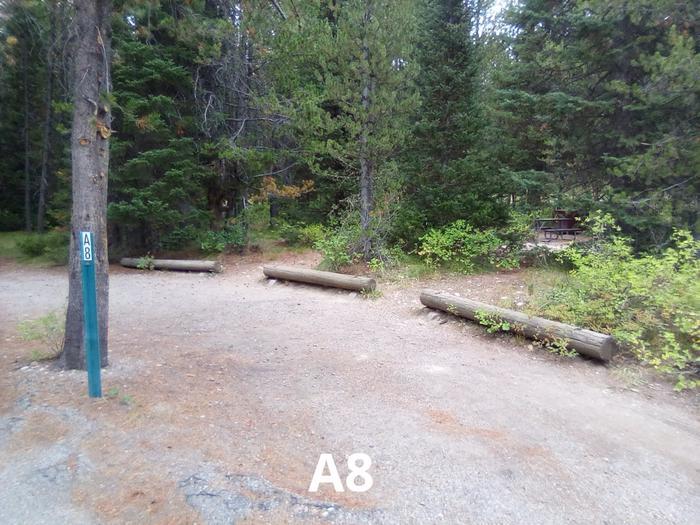 A Loop Site 8