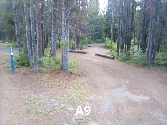 A Loop Site 9