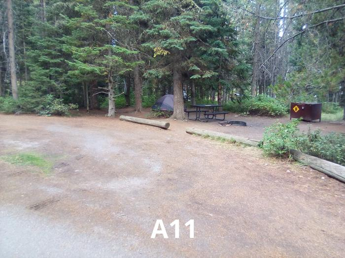 A Loop Site 11