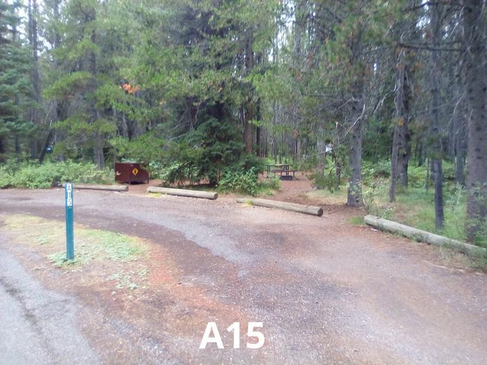 A Loop Site 15