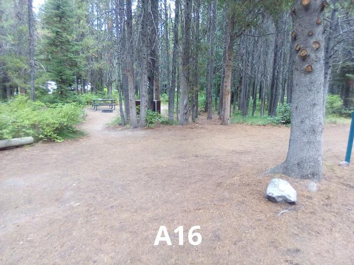 A Loop Site 16